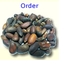 Order In Shell Pine Nuts
